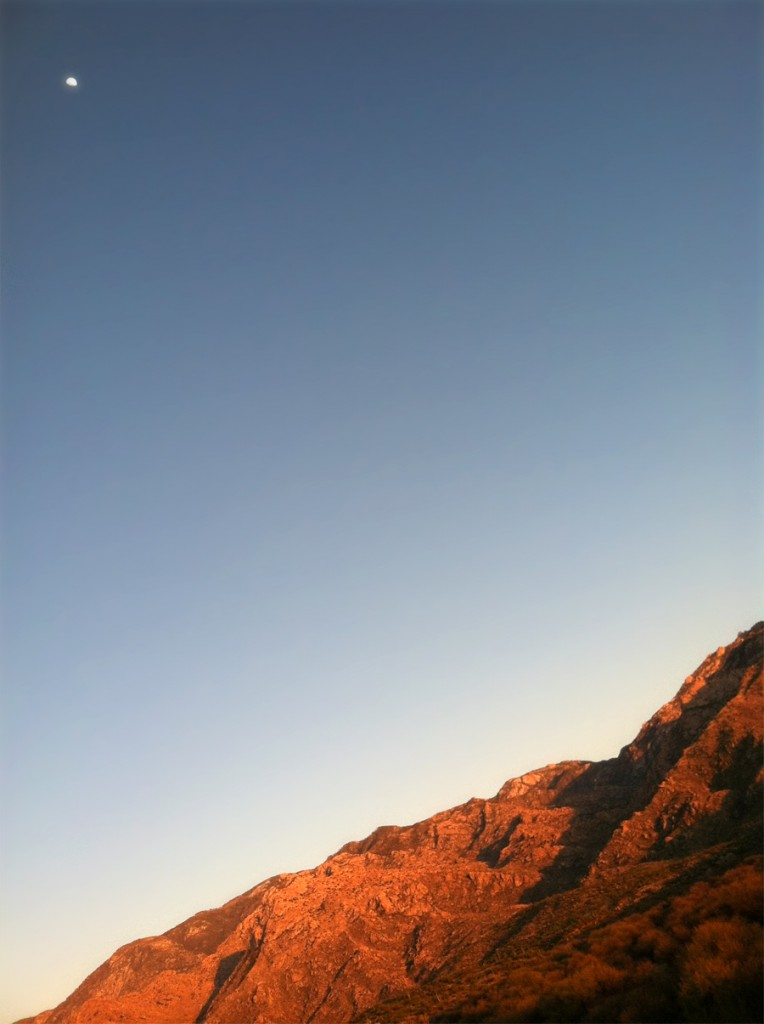 tucson mountain