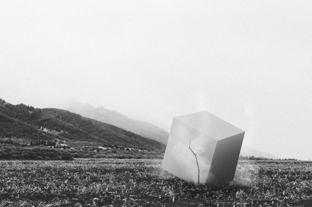 Mystery Cube Photograph by Jesse Quinn Lee