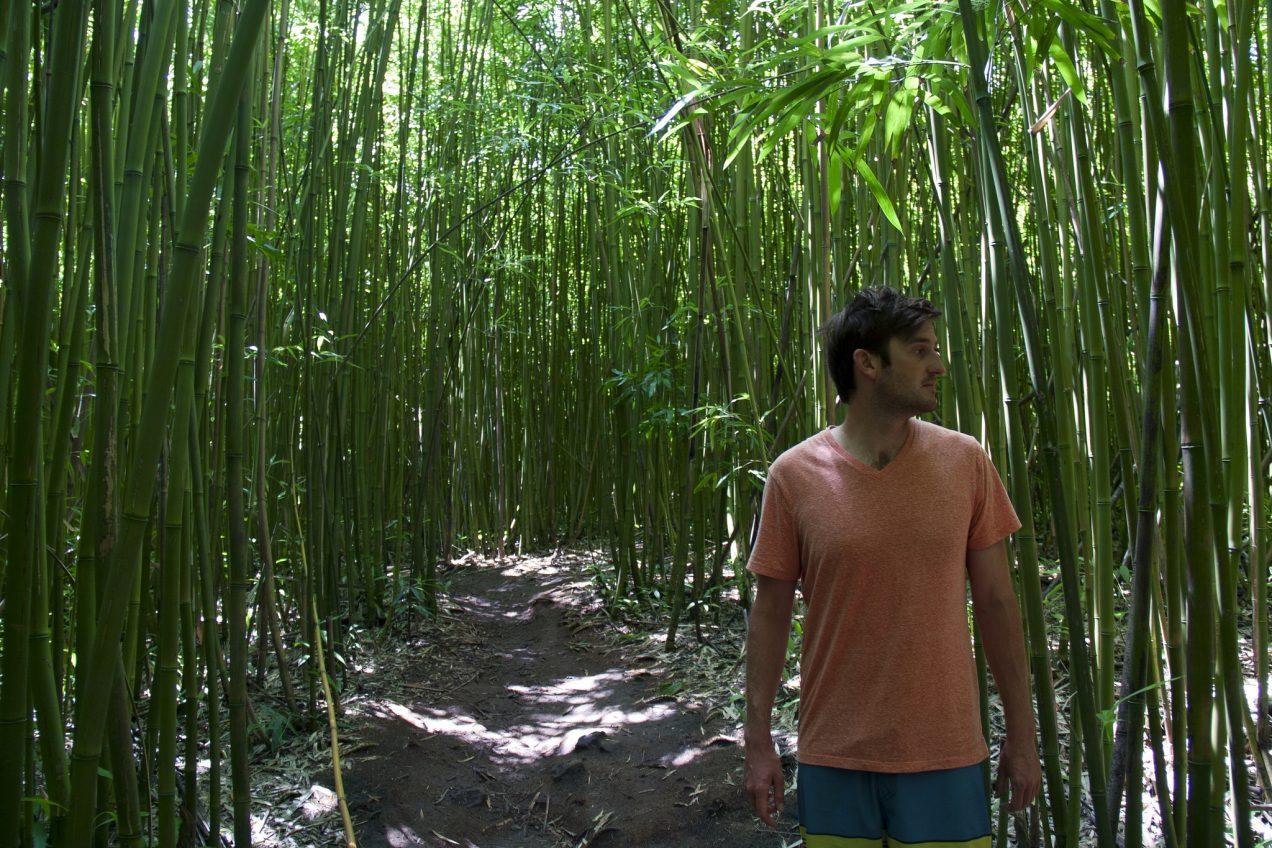 bamboo hike
